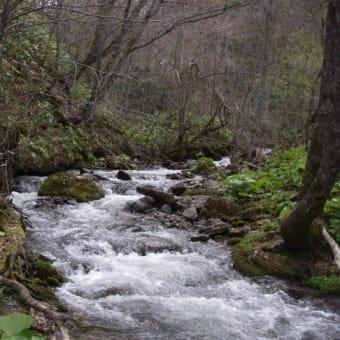 北海道渓流と温泉 森町