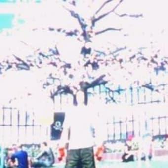 花見 桜花 バーチャル