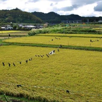 2012/09 福島いわきに行く