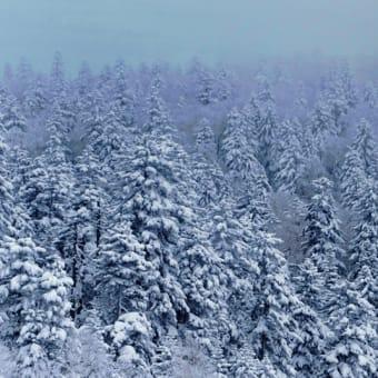 富良野岳夕景