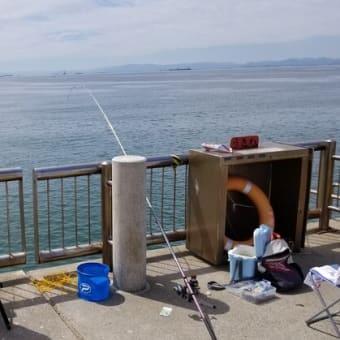 釣りに出かける。