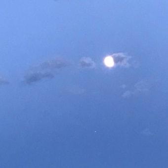 久しぶりの快晴!富士山と月が綺麗でした。