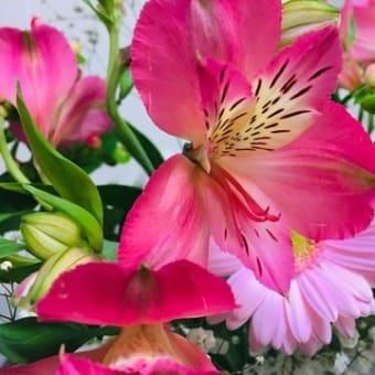 ランチ献立 柚子とネギの熱々ぶっかけうどん(⋈◍>◡<◍)。✧♡