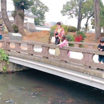 【小田原名所巡りシリーズ】小田原城 御茶壺橋|魚魚屋 半兵衛