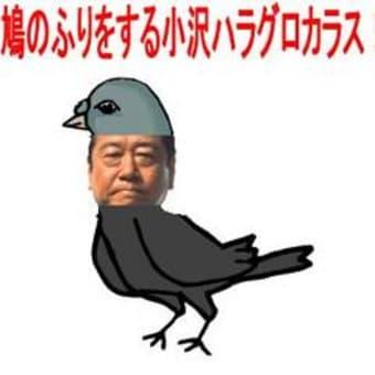 民主党小沢はハトかタカか!