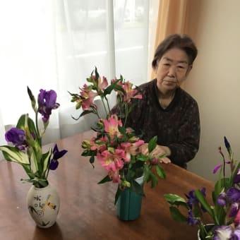 🌸さくらの花壇に花の種をまきました💐