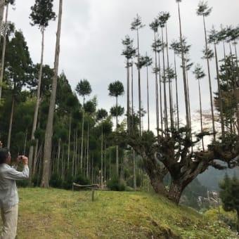 諫早より北山杉研修&中川ガイドツアーにお越しいただきました。