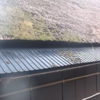 茅葺き屋根の補修