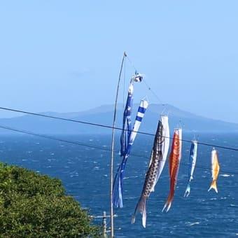 G.W.中の御蔵島ツアー中止のお知らせ