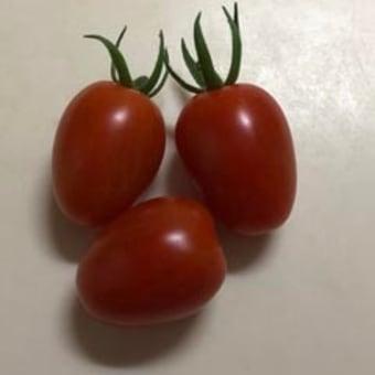 安心しろ!グッド・オーメンズは俺たちの英国ドラマだ!&トマト