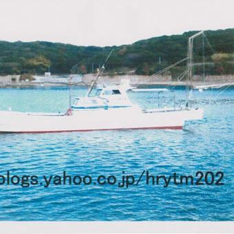 北九州・響灘<第八親栄丸>の年末の釣果は?