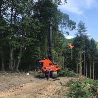 木材生産現場