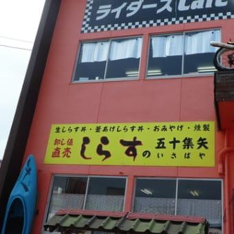 『生シラス丼』@いさばや