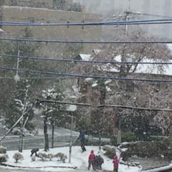 雪ん子   〜季節が逆戻り〜