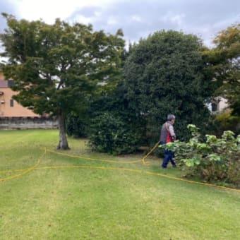 【プロゴルファーの】除草剤散布しました❗️【芝便り】