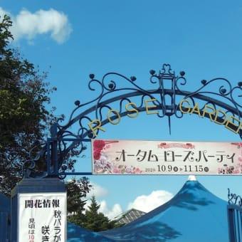 京成バラ園へ〜♪
