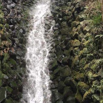 山薬近くのおすすめスポットのご案内! 箱根自然薯の森 山薬