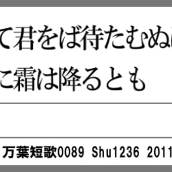 万葉短歌0089 居明かして0073