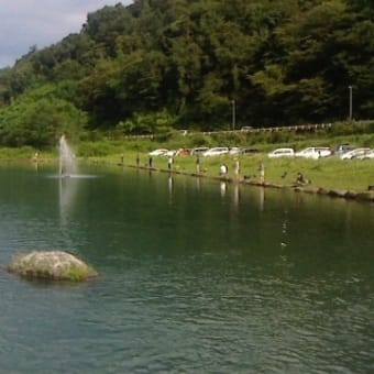 真夏のフィッシングフィールド中津川攻略 ネオスタイルキメラパワー炸裂