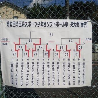 埼玉県スポーツ少年団ソフトボール中央大会