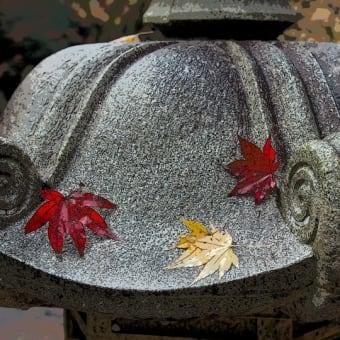鶏足寺の紅葉 その3