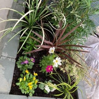 川崎市宮前区のINUK BASE(イヌキベース)の店頭植栽工事