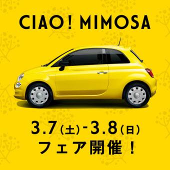 """だそうです。""""【3/7(土)-8(日)】週末フェア『CIAO!MIMOSA』開催"""""""