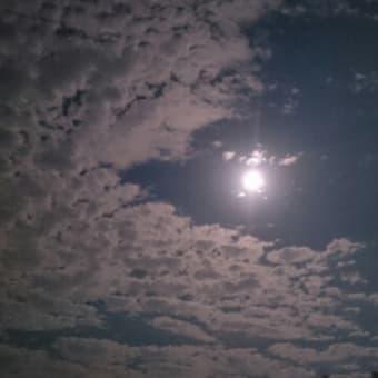 月がキレイです。