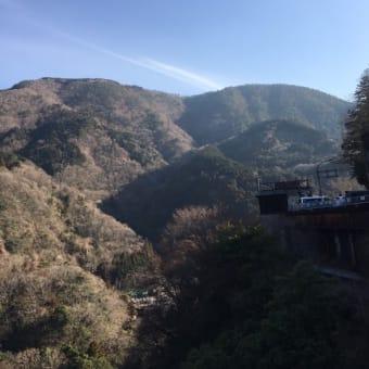 箱根さんぼ風景~八千代橋~|箱根自然薯の森 山薬