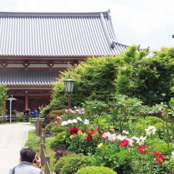 金亀山三學院の規模の大きさと清楚さにビックリ
