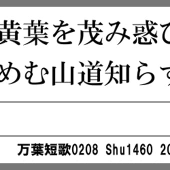 万葉短歌0208 秋山の0178