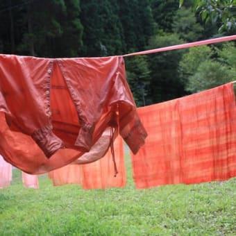 〈秋の森の草木染め〉 茜草の根を掘り、茜色を染めるワークショップ 「森の空想ミュージアム」と「友愛の森里/山再生ARTプロジェクト」周辺の森で