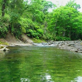 北海道 残暑の渓流にて