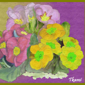 グラウンドゴルフ練習 カラオケ教室 ArtRageで花を描く