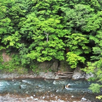 日高渓流 ひとり旅