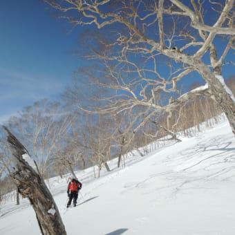 2013 妙高BCスキー 3