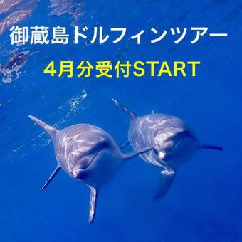 御蔵島ドルフィンツアー  4月分受付START!
