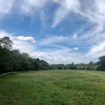 ソーシャルディスタンシングが根付いているのを実感、地元は安心!牧草地を通ってオタマジャクシ観察。