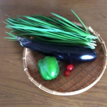 美味しい野菜の見分け方