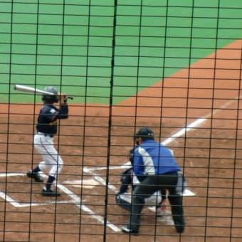 野球の応援おっかけ