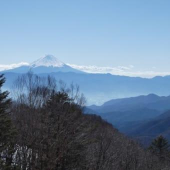 2020年2月1日乙女高原自然観察交流会