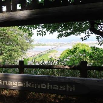 静岡のお茶の歴史 その十六 島田は蓬莱橋の展望台 (表紙は211系)
