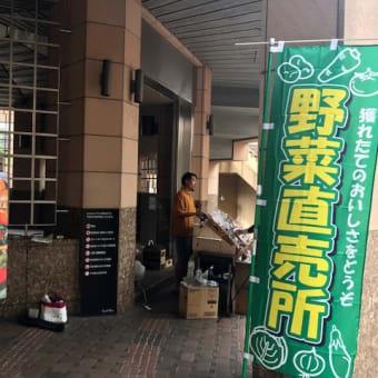 「あやめマルシェ」毎週火曜日、世田谷線三軒茶屋駅前にて開催!採れたて野菜が安価で美味しい〜❤️