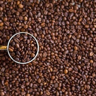 コーヒー豆の味は一体何が真実か。真実を探す旅が人生の楽しみですね。真実は1つでない。