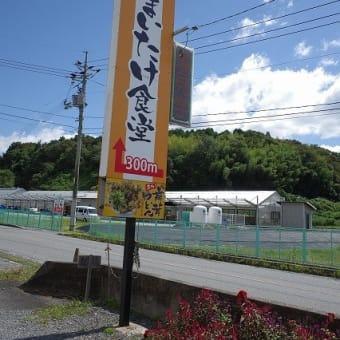 東広島の河内町入野きのこセンター直売所