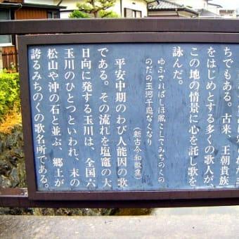 歌枕の地を訪ねて:多賀城 2 野田の玉川