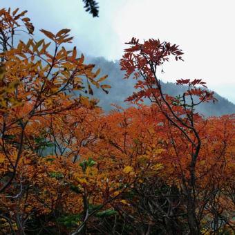 2012/10 常念岳から蝶ケ岳縦走
