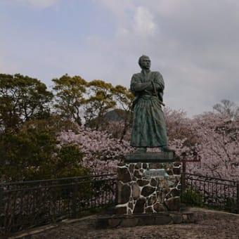 桜が満開でした