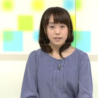片山千恵子 首都圏ネットワーク 13/02/12