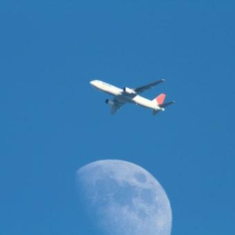 2011_12_05 今日はノスリと自宅上空ハイタカ&月と・・・